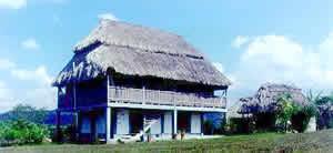 A Mayan village house