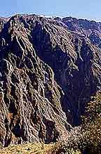 Colca Peru