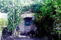 A house in the Tanah village