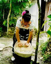 A woman cooks in a Mayan village