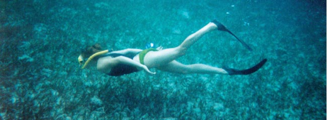 Belize Tours and Travel: Snorkeling in the Cayes